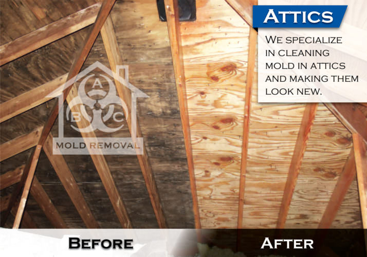 attic mold removal & Removing mold from an attic