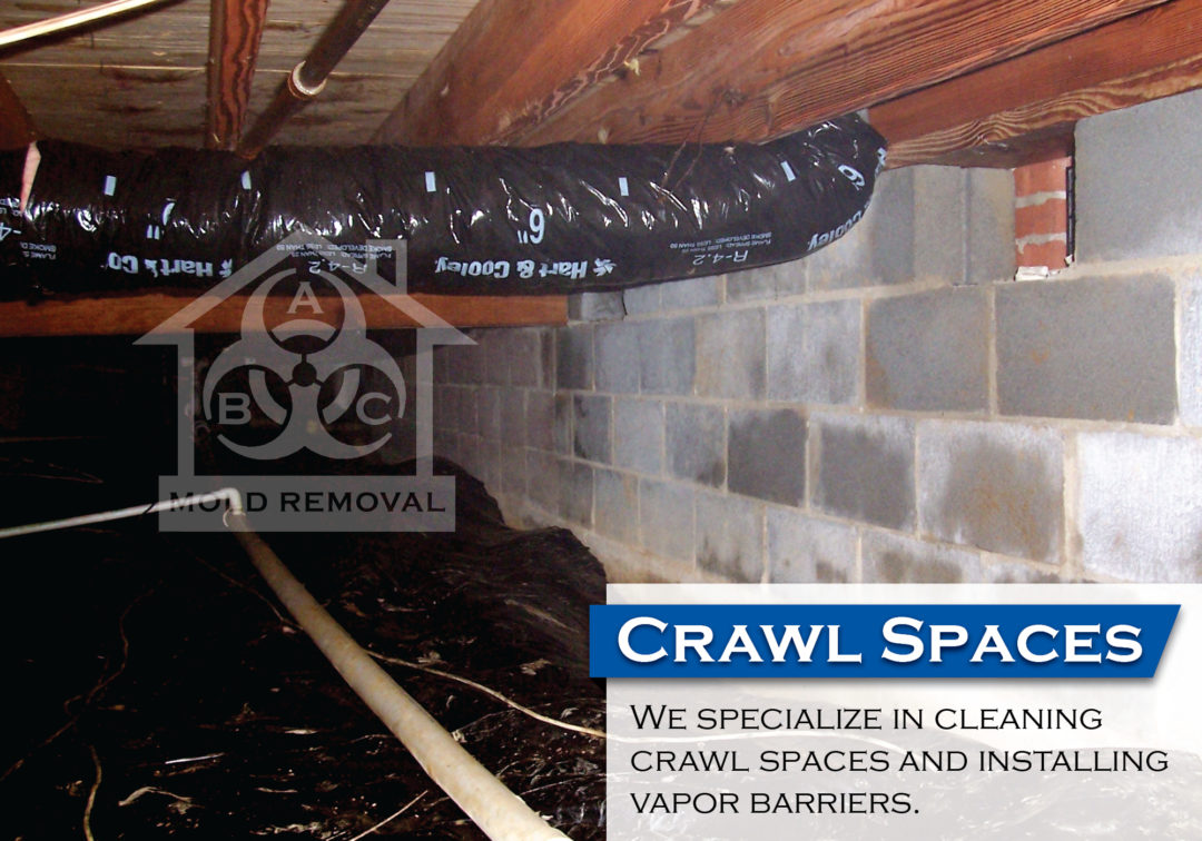 Crawl Space Mold Before and After