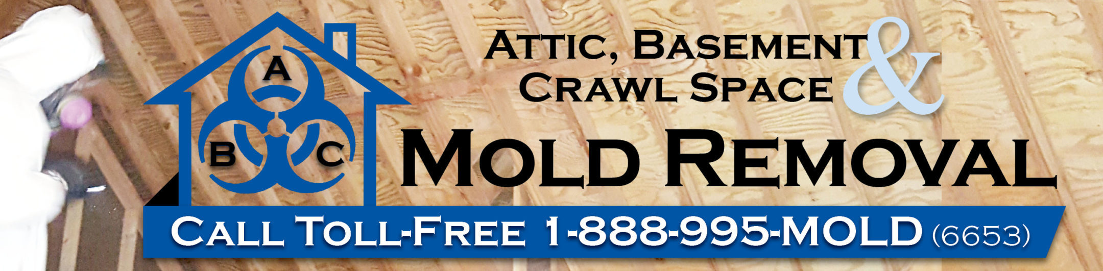 Attic Mold Remediation Michigan Mold Inspection In